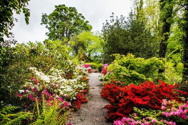 plas cadnant hidden gardens - Hidden Garden